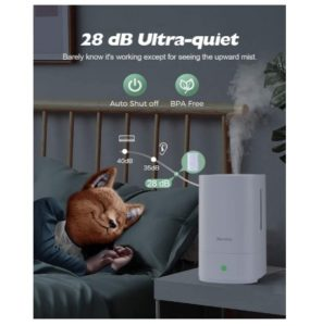 Homasy HM421A bruit insonore